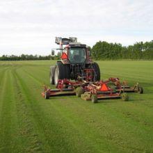 Den store græsslåmaskine 2