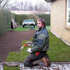 Rullegræsset udlægges i forband