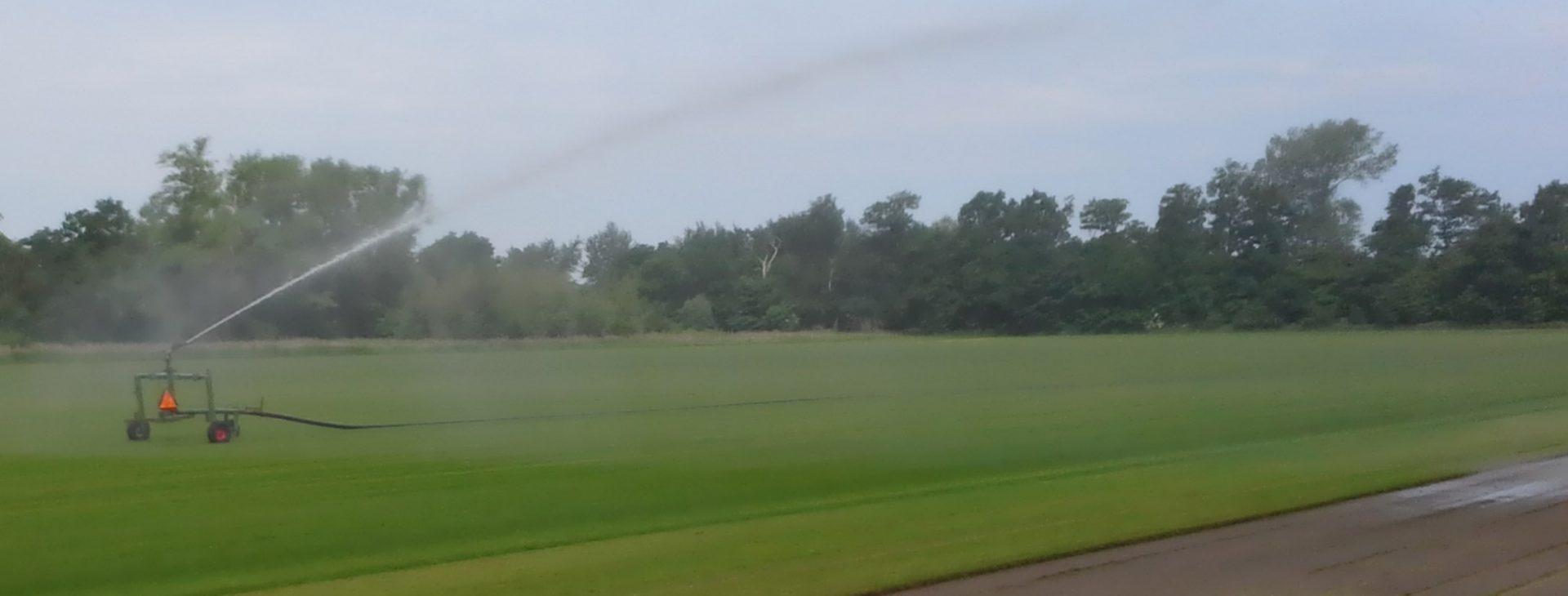 Den hurtige vej <br /> til en flot græsplæne!