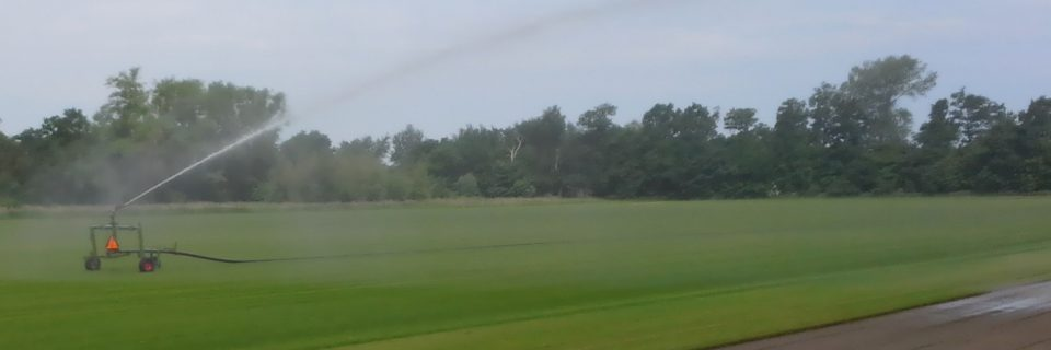 Den hurtige vej  til en flot græsplæne!
